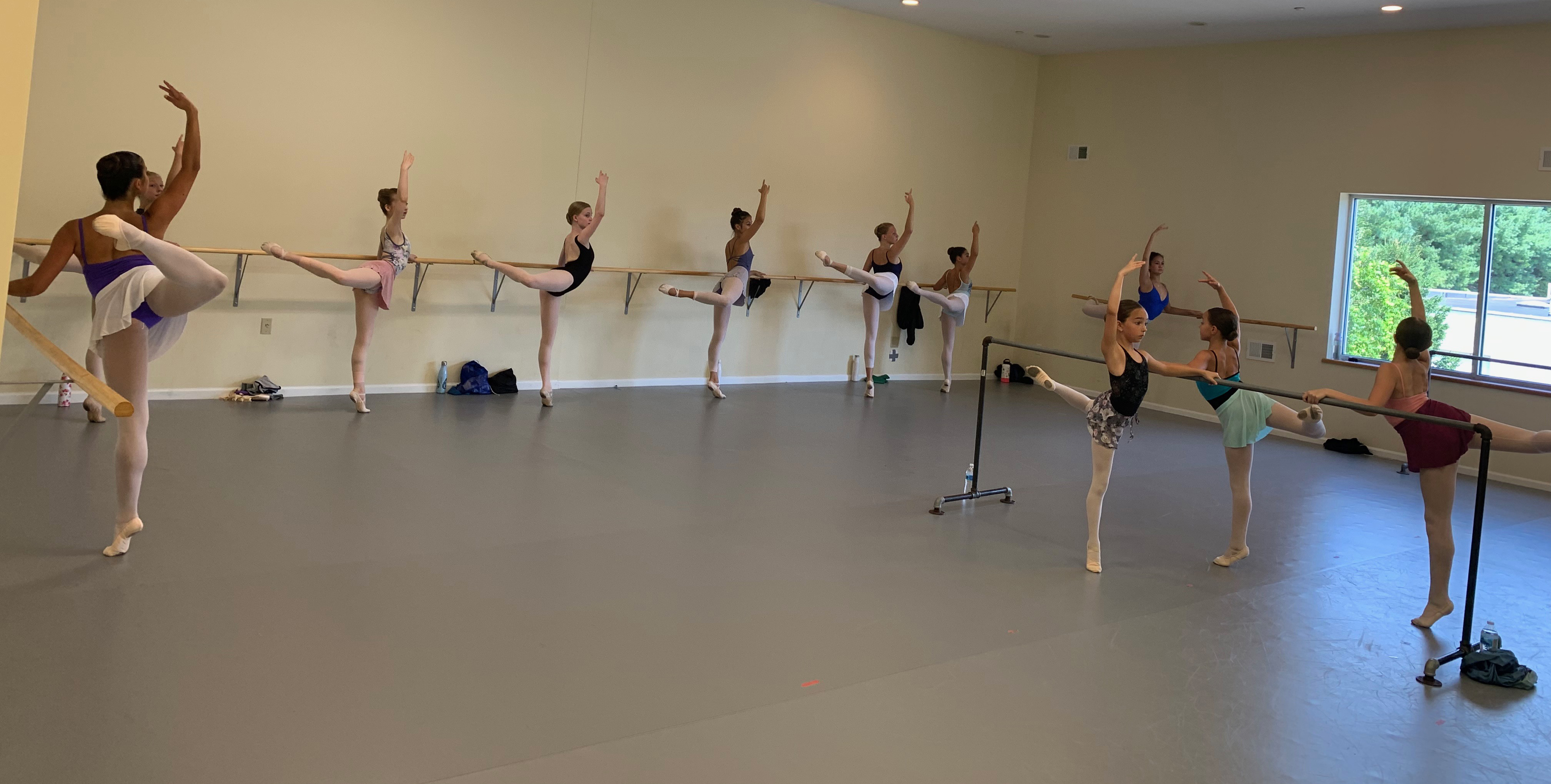 Summer Intensive Studies